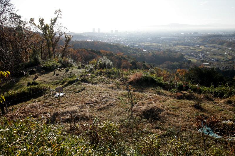 主郭から眺める大阪平野は必見!
