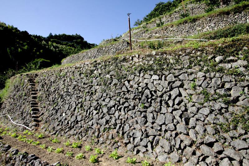 地区で採れる石材を積んで築かれた石垣