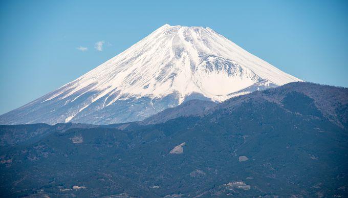 富嶽三十六景…湾内観光クルーズで駿河湾からの富士山を見よう!おまけにカモメも撮れるかも(笑)