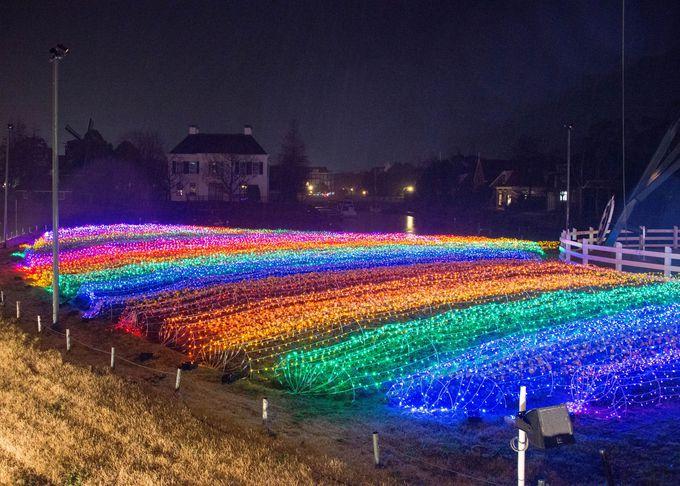 フラワーロードでレインボーカラーに輝くライトウェーブを撮ってみよう