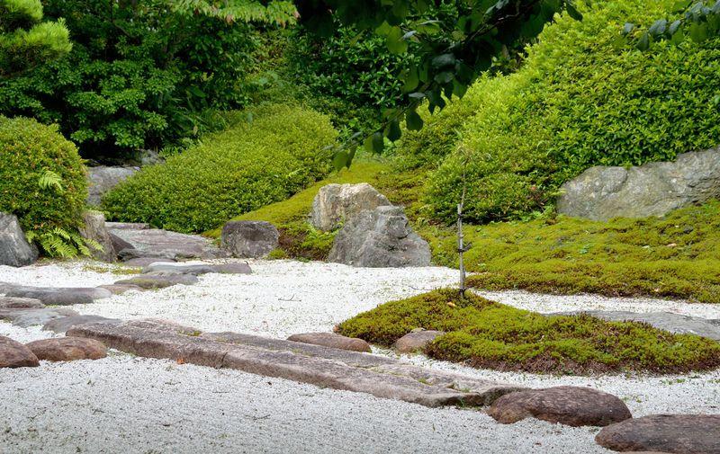 鎌倉武家文化の一角に触れる、閑静な佇まいの浄妙寺。武家の宗派、臨済宗の文化を味わおう