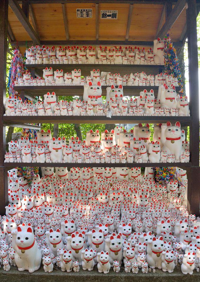 豪徳寺は、招き猫伝説の寺として有名。猫の優しい表情に癒やされよう
