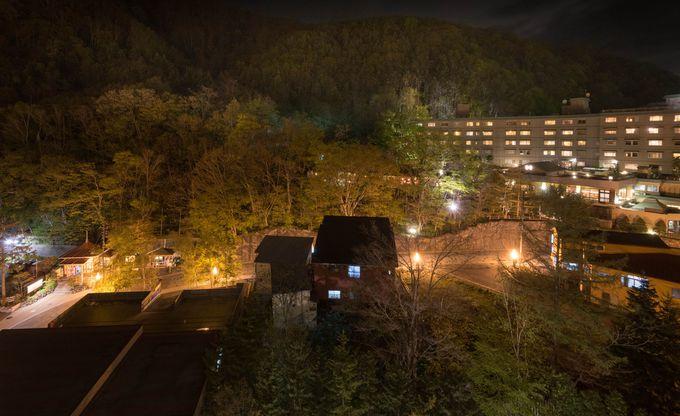 山肌に萌える木々が、温泉地のライトアップに照らされた夜景もまた格別な趣が−