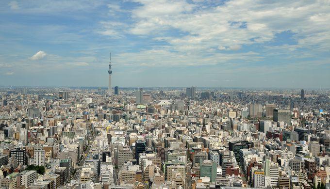最後は日本橋から遠景のスカイツリーを狙うと、都会の「ビル海」の中に一筋が!
