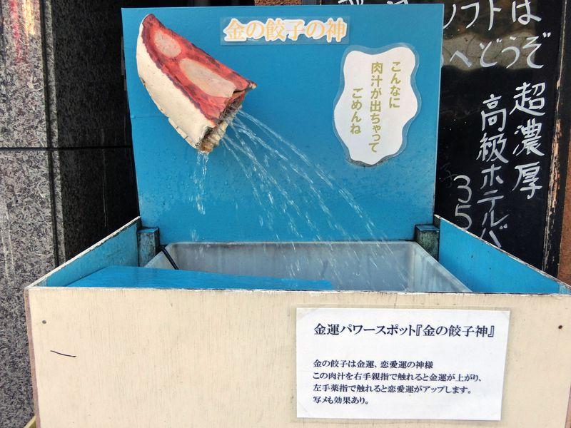 グルメだけじゃない!横浜中華街には遊べるスポットがいっぱい♪おもしろ水族館に金の餃子の神!?