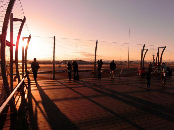 【第1旅客ターミナル】夕方はここで夕陽を堪能!GULLIVER'S DECK (ガリバーズデッキ)