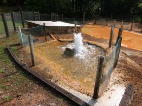 2m吹き上がる間欠泉は圧巻!島根県木部谷温泉「松の湯」