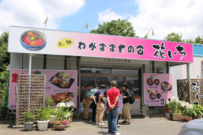 場内食堂を楽しもう!美味しい海鮮丼が食べられるお店「花いち」