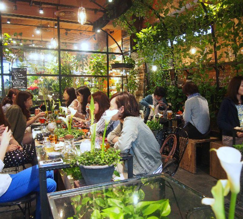 """青山に緑のオアシス!お花屋さんのカフェ""""TEA HOUSE"""""""