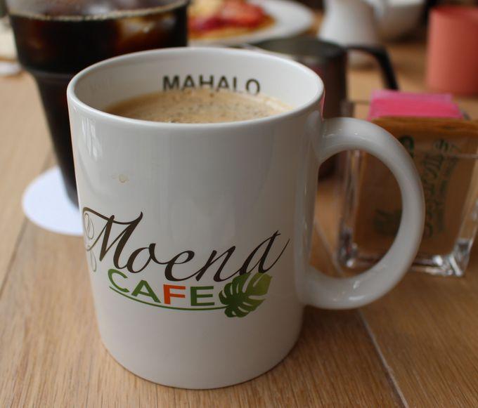 これから輸入予定の幻のコーヒーとは?
