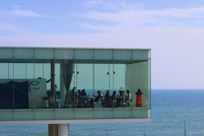 まるで海に浮いているみたい!グッドデザイン賞&ブルネル賞を受賞したカフェ