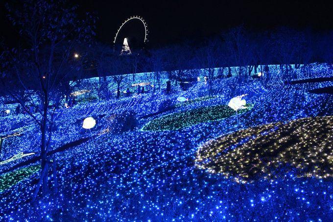 <魅力その3>青の世界に染まる「光の海」