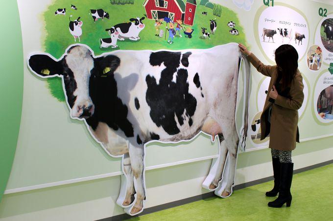 驚き!牛乳工場ってこんなに魅力的だったの!?