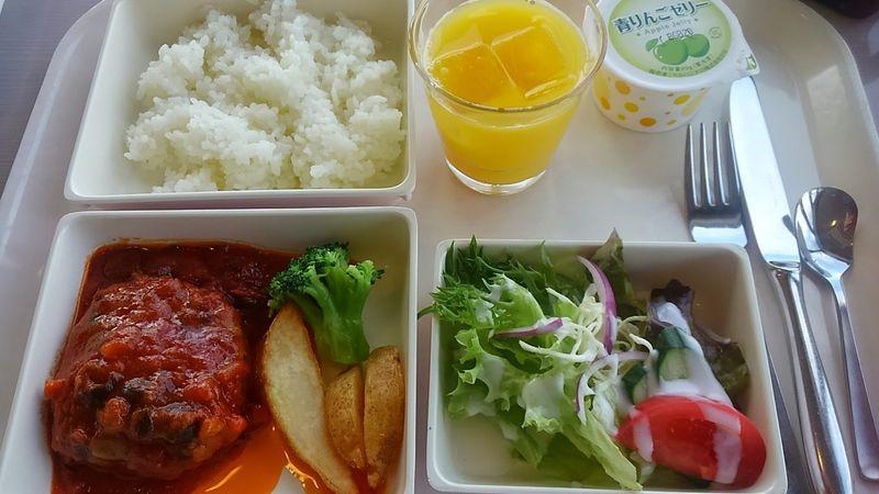 飛行機見ながら機内食風ランチ!千葉「航空科学博物館」の展望レストランが面白い!