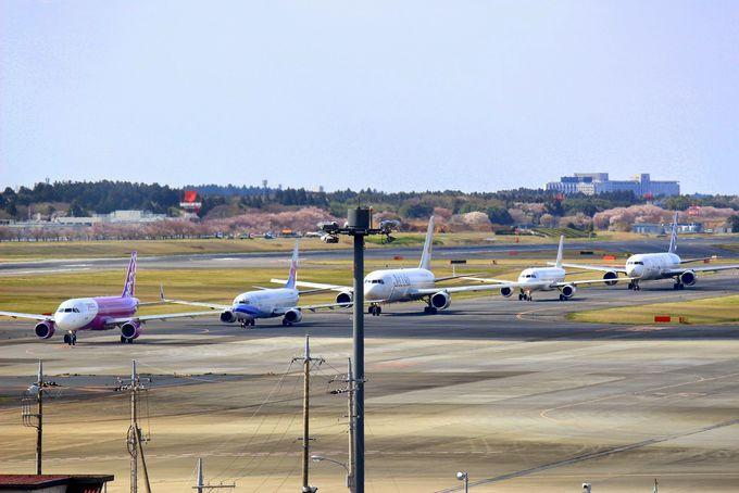 飛行機の渋滞も観察!成田空港の滑走路も見える!