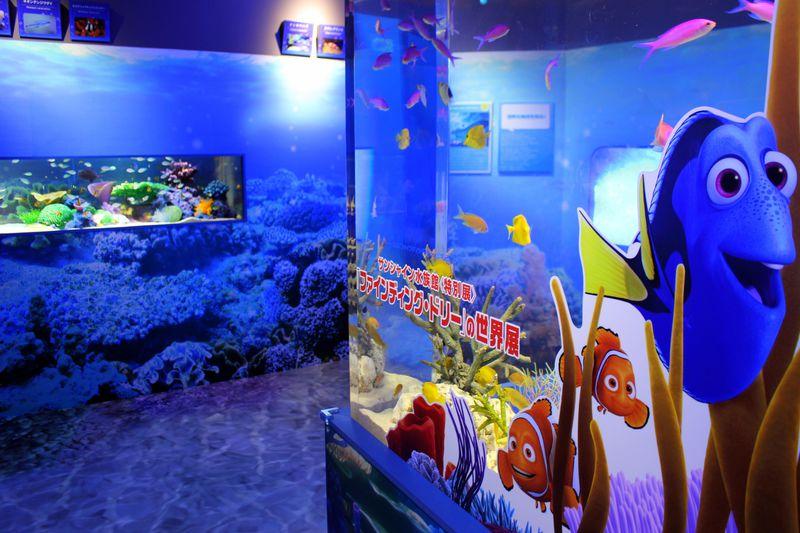 ドリーに会いに行こう!池袋サンシャイン水族館「ファインディング・ドリーの世界展」2016