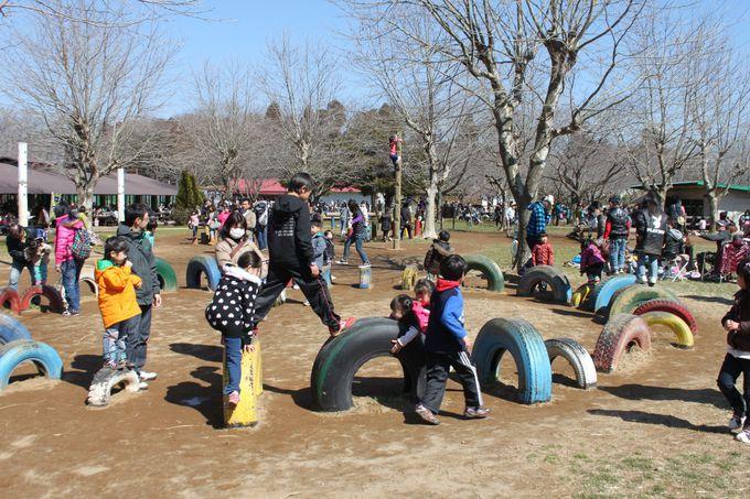 絶景の遊覧も!大人も子供も楽しい遊びがいっぱい!
