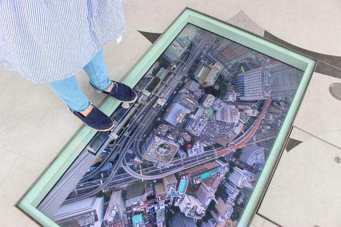 絶景の空体験!「天空251」から東京のすごい景色を楽しむ!