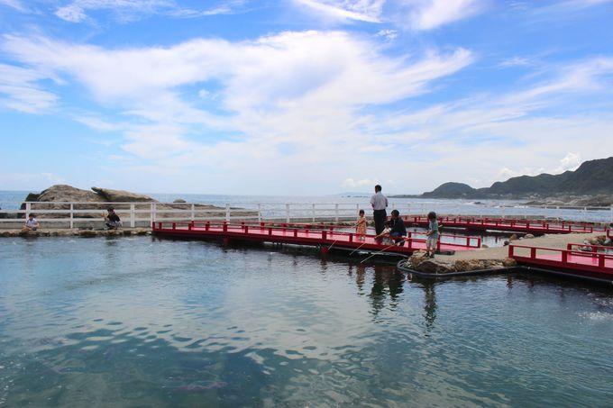 絶景!太平洋バックに釣り体験!