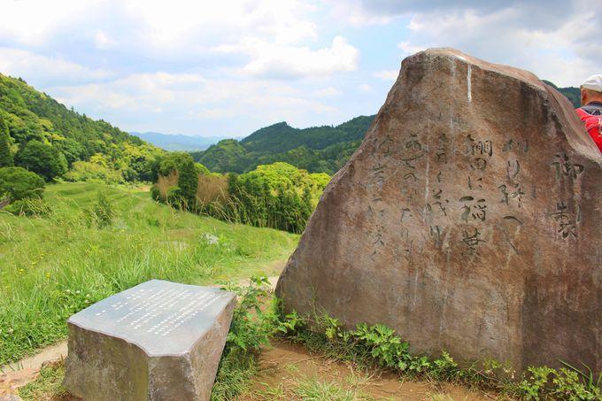 天皇陛下も感動。「日本の棚田100選」「千葉県の名勝」に選ばれた美しい風景