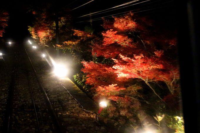 夜間運行のケーブルカーに乗ってみよう!