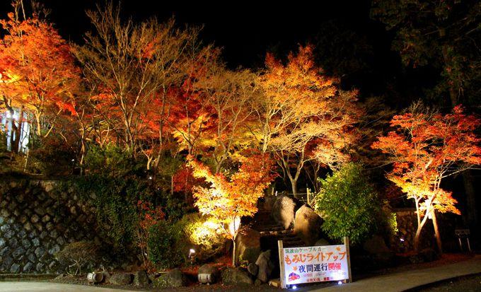 筑波山紅葉ライトアップの場所と見頃
