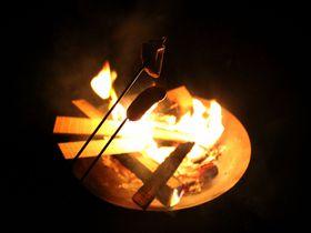 夏より楽しい!?さがみ湖「パディントン・ベア・キャンプグラウンド」の冬キャンプ!