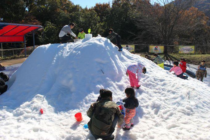 「ちびっこ雪遊び山」と飲食エリア