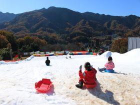さがみ湖プレジャーフォレスト「スノーパラダイス」で雪遊び!