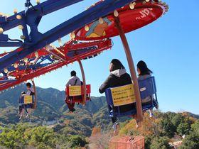 頭と体を使う!「さがみ湖 プレジャーフォレスト」は子連れに人気の遊園地