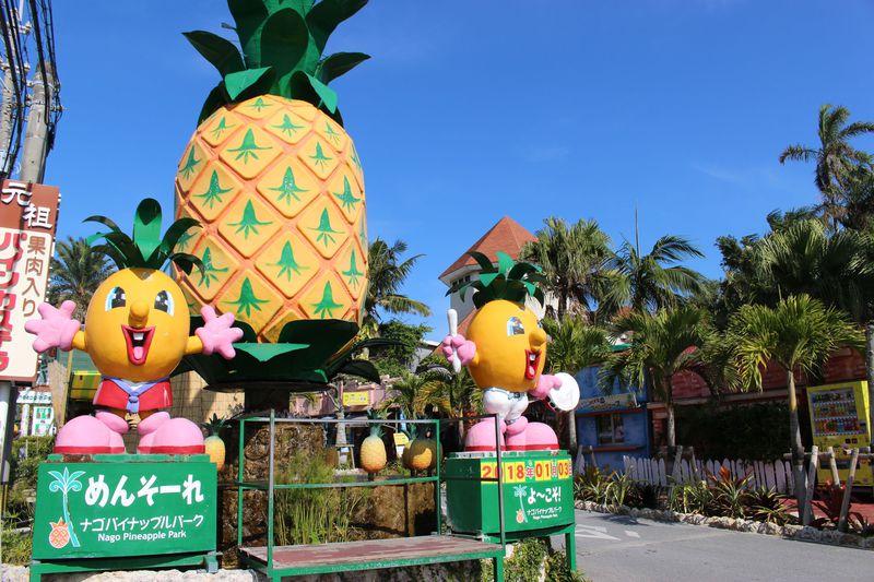 南国らしさ満点!沖縄「名護」の観光スポット10選