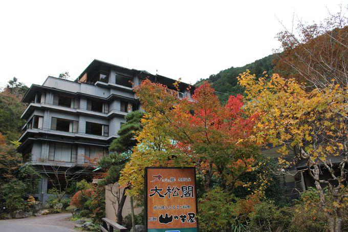 埼玉の人気ランキング上位!名栗温泉の老舗旅館「大松閣」