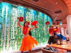 東京ディズニーリゾートの「カフェ・カイラ」は夜がイイ!その秘密とは?