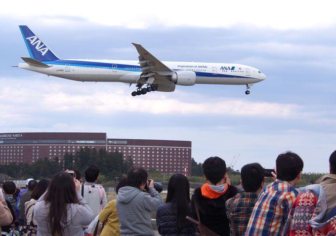 1日目午前:成田さくらの山で飛行機見学&ランチ!