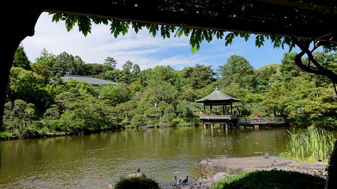 成田山公園(30分)