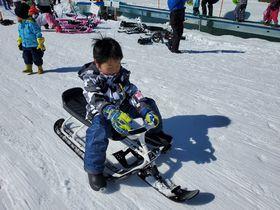 「ノルン水上スキー場」は子連れにおすすめ!その5つの理由とは?