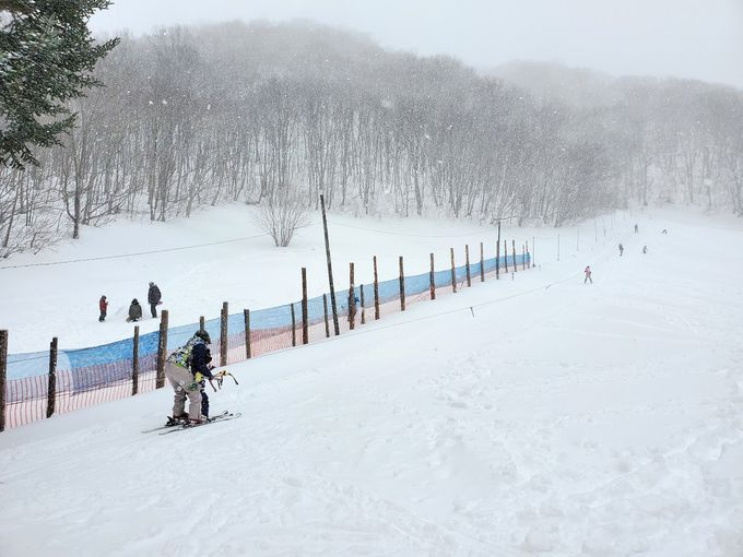 「ロープ塔」を使ってスキーデビュー!