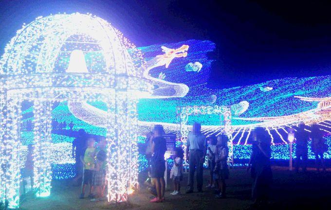夏も冬も新潟の夜は「イルミネーションイベント」を観光