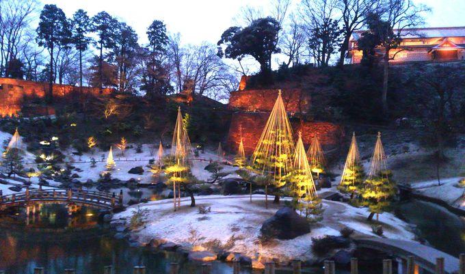 「玉泉院丸庭園」のライトアップ