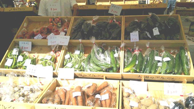 オーガニック野菜を生産している「CULTA Farm」(カルタ・ファーム)