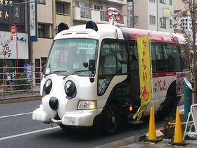 大人も子どもも嬉しい♪無料のパンダバスで浅草観光へ行こう!
