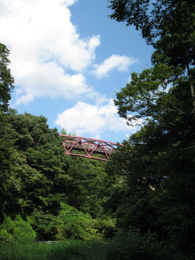 三つの個性的な橋