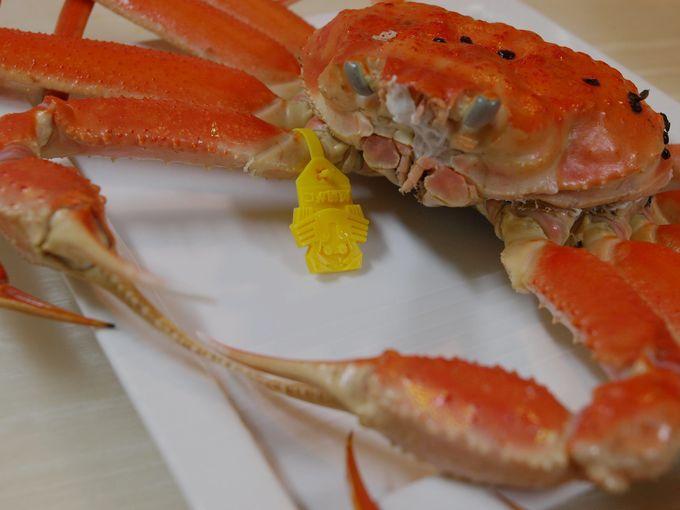 「越前ガニ」「セイコガニ」福井観光で新鮮な海鮮三昧