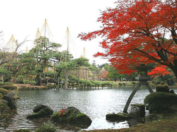 紅葉が楽しめる秋の金沢へ