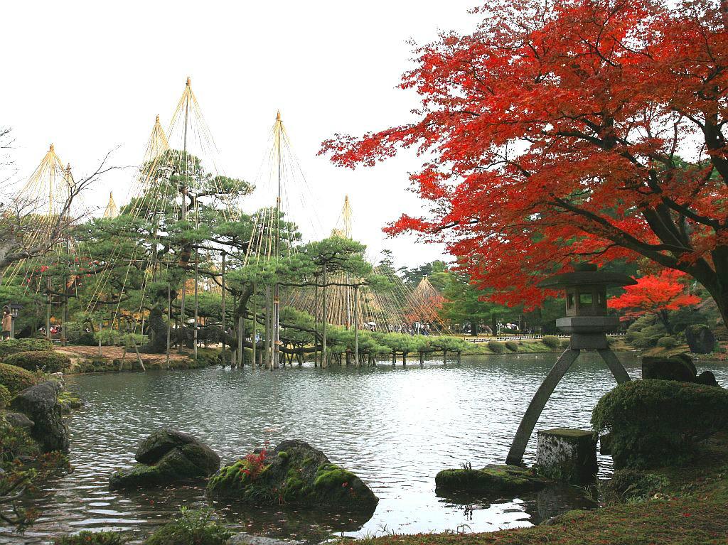 代表的な金沢の紅葉スポット、兼六園
