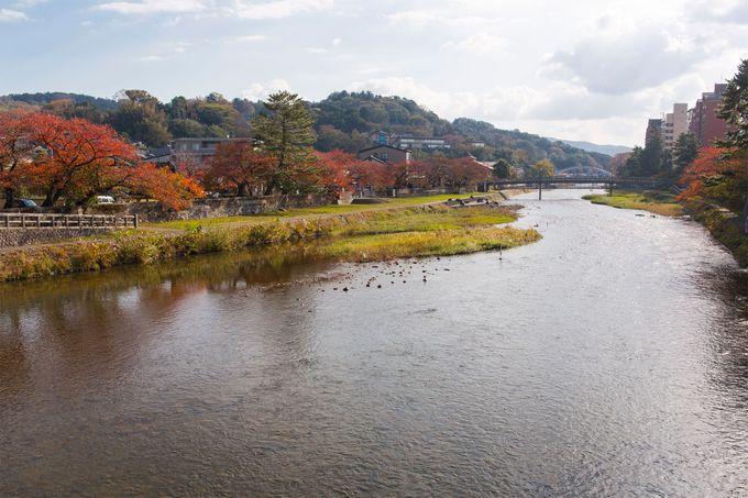 浅野川や「ひがし・主計町茶屋街」の紅葉
