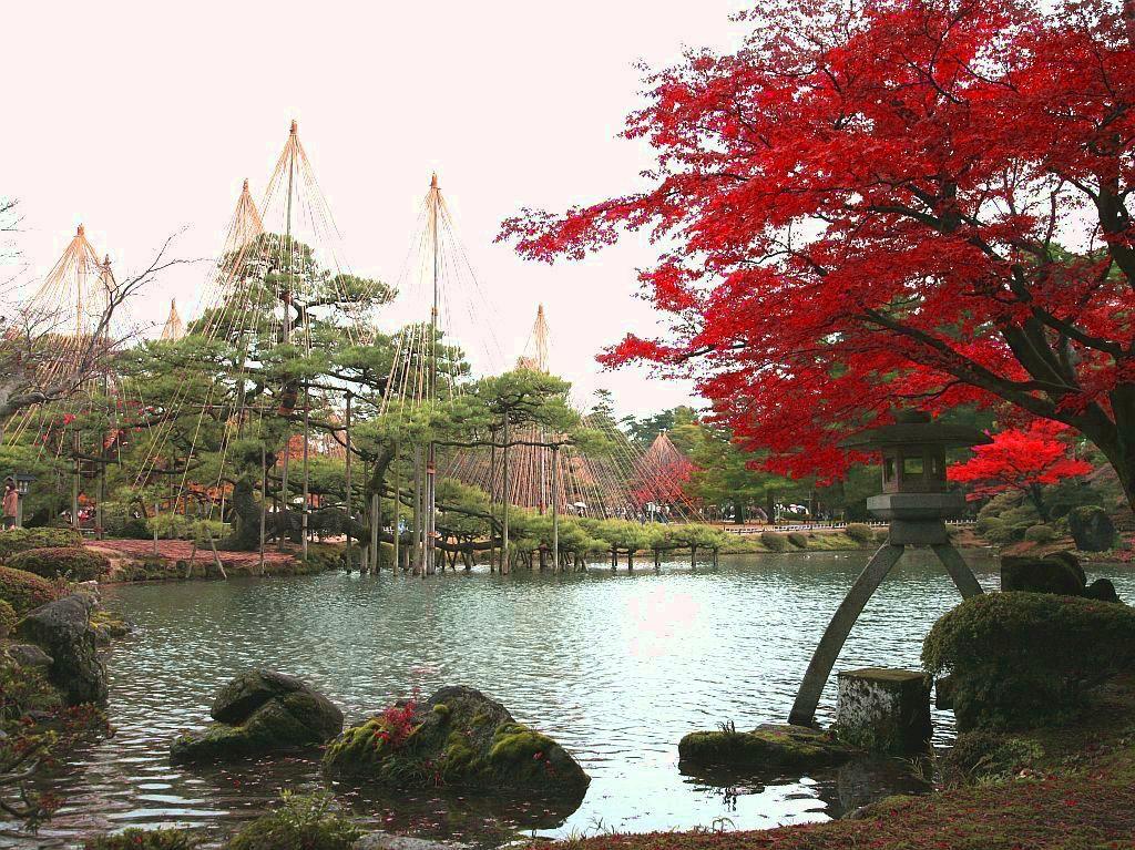 代表的な金沢の紅葉スポット「兼六園」