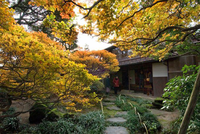 歴史ある「大乗寺」や「寺島蔵人邸跡庭園」も!