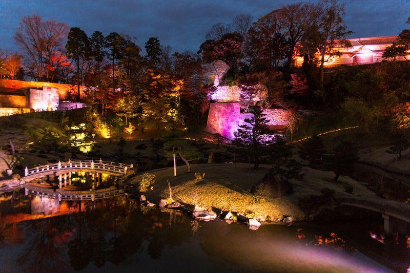 玉泉院丸庭園の和楽器の演奏&ライトアップ