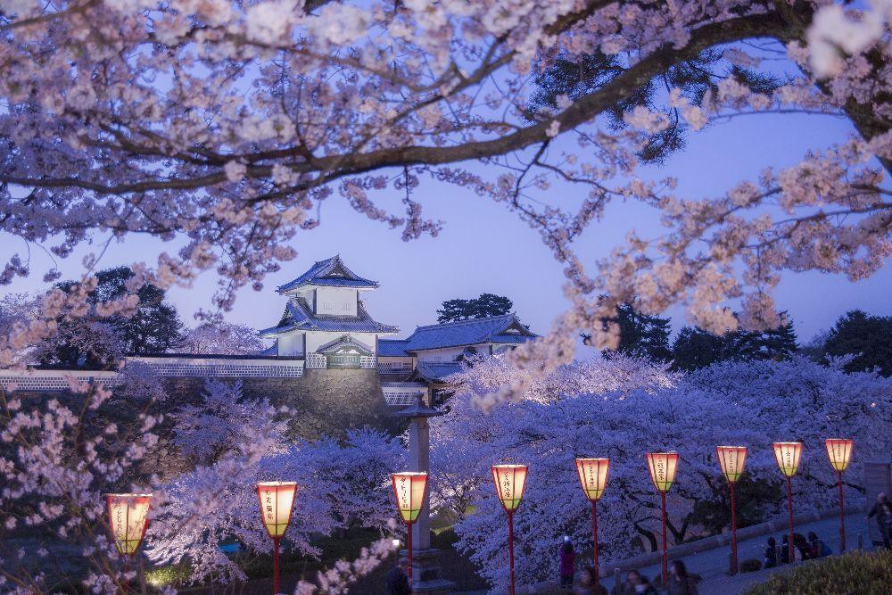 金沢城公園のライトアップ